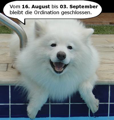 Urlaub August Hundi